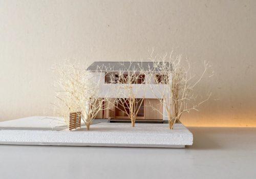 旗竿敷地に建つ家